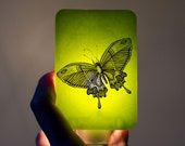 Butterfly Nightlight of Fused Glass in Lime Green - Happy Owl - night light for baby or nursery - Insect Bright Summer Colors