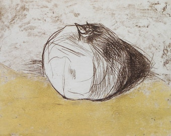 Pomegranate 1 - 6.5 x 5.5 - drypoint etching of a Pomegranate with Yellow OOAK