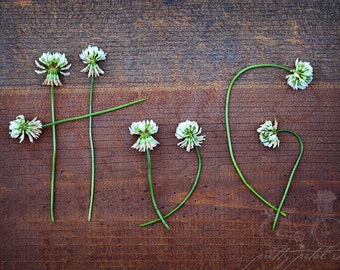 Fine Art Photo, Clover Wildflowers, Spell HUG, Rustic, Flower Photo, Wood, Wedding Gift, Love Art, Romantic Photo, Typography Art, Hug Art