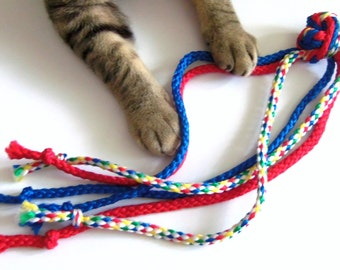 Dog, Cat and Ferret Toy, Blue Red Green Yellow, Gift for Dog Cat Ferret
