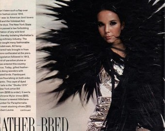Vintage 1966 Look Magazine Advertising  Feather Bred Fashions,