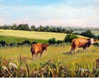 Landscape Print by Dottie Dracos, a beautiful field with cows in Snode, Langeland, Denmark