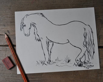 vintage horse drawing, Clint Shilling 1965