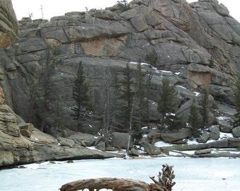 Frozen Lake and log 8x10 print