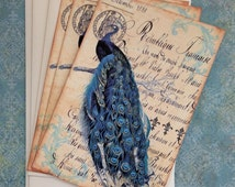 French Peacock Notecards - Vintage Paris Peacock Notecards - Flat Notecards, Teal - Set of 3