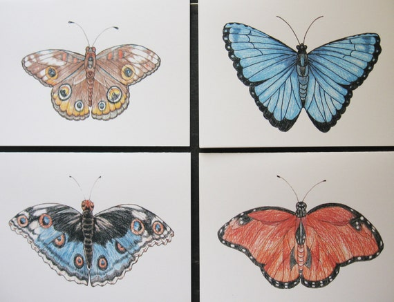 Butterflies Note Cards Set /4 Assorted Watercolor, Colored Pencil and Pen and Ink