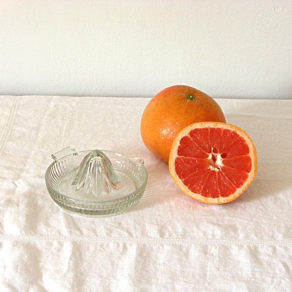 Glass Citrus Juicer Electric ~ Vintage glass citrus juicer