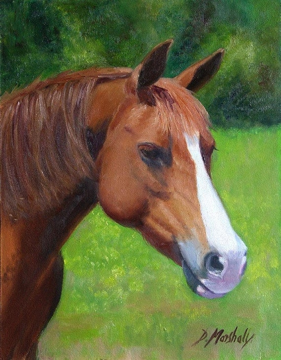 Buttercup - oil painting