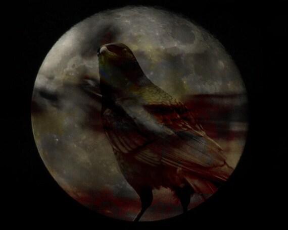 50% OFF SALE: Raven Moon Digital Art Print