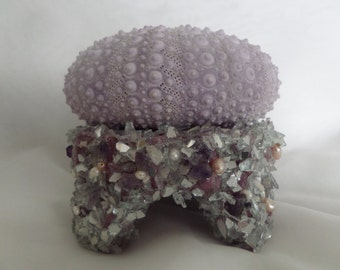 Beach Decor-Natural Prurple Sea Urchin Night Light