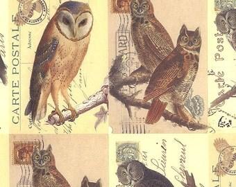Mixed Owl Postcard Print Italian Paper ~ Rossi Italy R221
