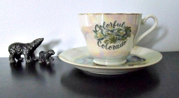 Midcentury Colorful Colorado souvenir cup and saucer - Iridescent beauties