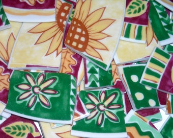 Funky  Handcut Mosaic Tiles from Plates  SEP104
