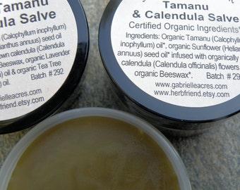 Tamanu Calendula Salve, Calendula Infused, Organic All Natural Herbal Balm