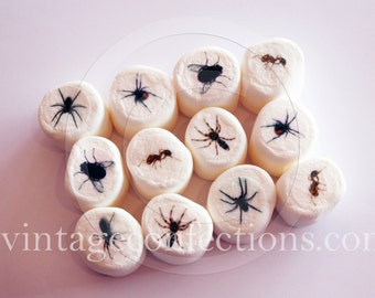 Creepy bugs edible art marshmallows by Vintage Confections