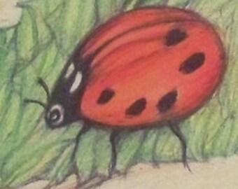 aceo wildlife ladybug magnet