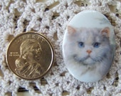 Cameo Darling White Persian Cat Hand Applied Porcelain Fired Decal 40x30 Ready for you to create ECS