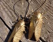 Cicada Earrings in gold