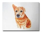 Limited Edition Print Dog Portrait 8x10 Fine Art from Watercolor Painting  Modern Minimalism Yellow Dog Canine Art Contemporary Wall Decor