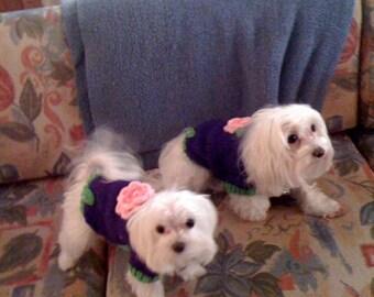Sweet Dog Sweater, Hand Knit Pet Sweater, Full Length, Size SMALL, Rosetta