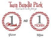 Monthly Boy Girl Twins Milestone Stickers- monthly baby stickers- baby bodysuit sticker decal- Add optional Gerber ONESIES GRL305 and BOY264