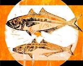 Fish Abstract Realism Digital Art Aquatic Nautical Wildlife Wild Lake Water Ocean Swimming Orange Black Wall Decor Giclee Print 8 x 8