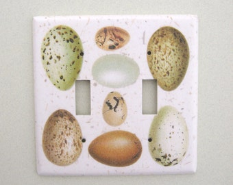 Double bird egg study light switch cover switchplate