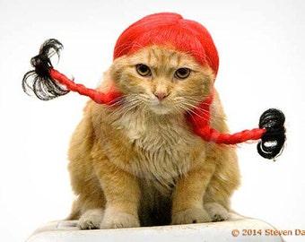 Cat Print, Pretty Cat in Red Wig Cute Kitty, 8x10 Cat