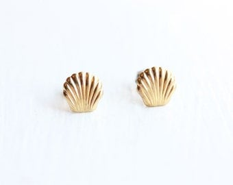 Small Shell Studs - Gold or Silver