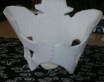Pelvis Model