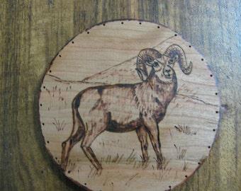 Wood Burnt Image of a Big Horn Mountain Sheep Basket Bottom