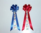 Medium Model Horse Rosettes, 5 inches, Star Theme, Set of 2 Awards, Red and Blue