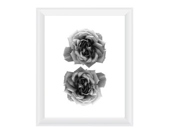 Roses Black & White. 8.5x11. Fine Art Photographic Print. Minimal simple style. Natural Home Decor. Indoor garden botanical