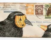 Crow Dress Up Postcard