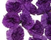 100 Purple Carnations - Artificial Flowers -  PRE-ORDER