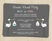 Gender Reveal Party Invitations, Stork, Blue or Pink, Boy, Girl, Set of 10 Printed Shower Invites, Free Shipping, STKGR