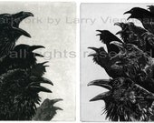 Raven artwork , Raven, crow,  Etching, 7 inch x 10 inch 2013