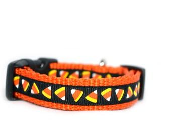 Candy Corn Dog Collar - Halloween dog collar - Small dog collar - Candy corn collar - Fall dog collar - Thanksgiving dog collar - Candy dog