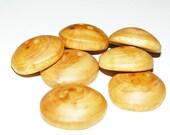 "7 Handmade  apple  wood buttons, accessories (0,94"" diameter x 0,31"" thick)"