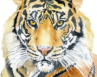 Tiger Watercolor Painting - 11 x 14 - Giclee Fine Art Print - African Animal - Wildlife - Safari