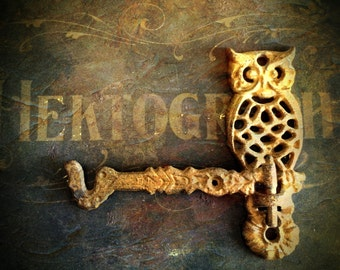 Owl Hook Vintage Cast Iron Swivel Arm Wall Bracket