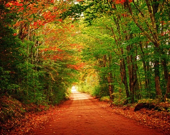 Prince Edward Island Canada Historic Road Nature Photography Art, Autumn, Harvest, Thanksgiving, Fall Colors, Foilage