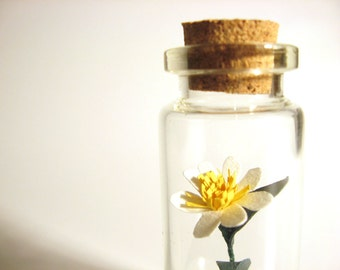 paper flower sculpture in jar tiny white gift