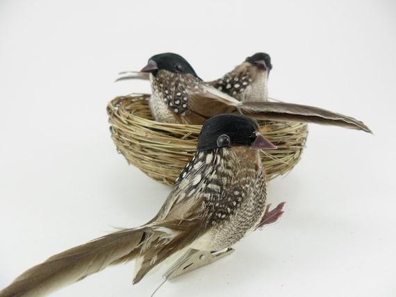 3 oiseaux artificiels avec les plumes des oiseaux floral for Oiseaux artificiels de decoration