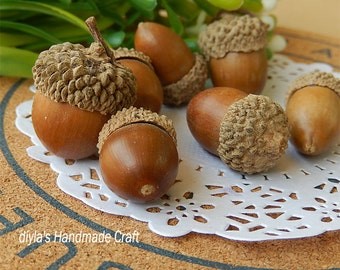 10pcs Natural Acorns,real Acorns,Large Acorns with cap,Natural Nuts,Loose fruit ,acorn charm,acorn pendant,acorn jewelry Nature Acorn(p072)