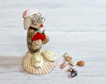 Shell Animal Souvenir Seashell Creature Reader Teacher