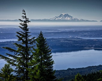 Olympic Park View through the Pine Trees of Mount Rainier in the distance in Washington State No.0203 - A Mountain Landscape Photograph