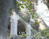 White Granite, White Lace, Savannah, Georgia - An Original Photograph by Melissa Schneider