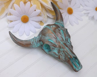 Skull Taxidermy Steer Longhorn Decorated Skull Skull