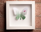 Tui: Framed Paper Butterfly with Hot Pink Bird in the Grass